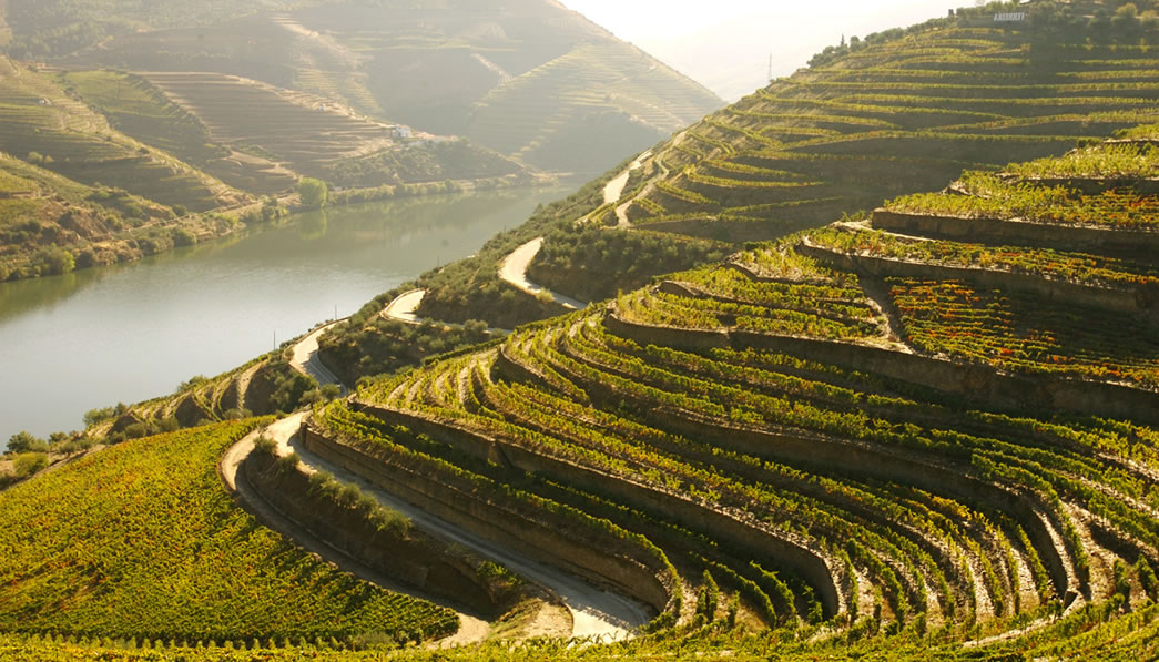 Terroir do Douro em Portugal