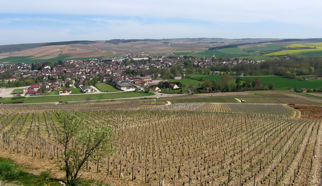Terroir do Romanée-Conti