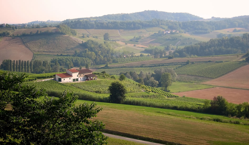 As colinas de Monferrato, local de origem da Barbera